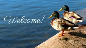 Welcome! 2